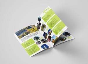 Võrumaa brošüür vene keeles