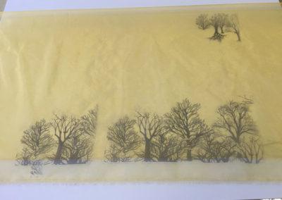 Photo textile (2)